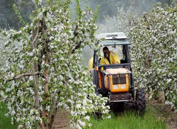 pomiculteur traitant ses pommiers en fleurs