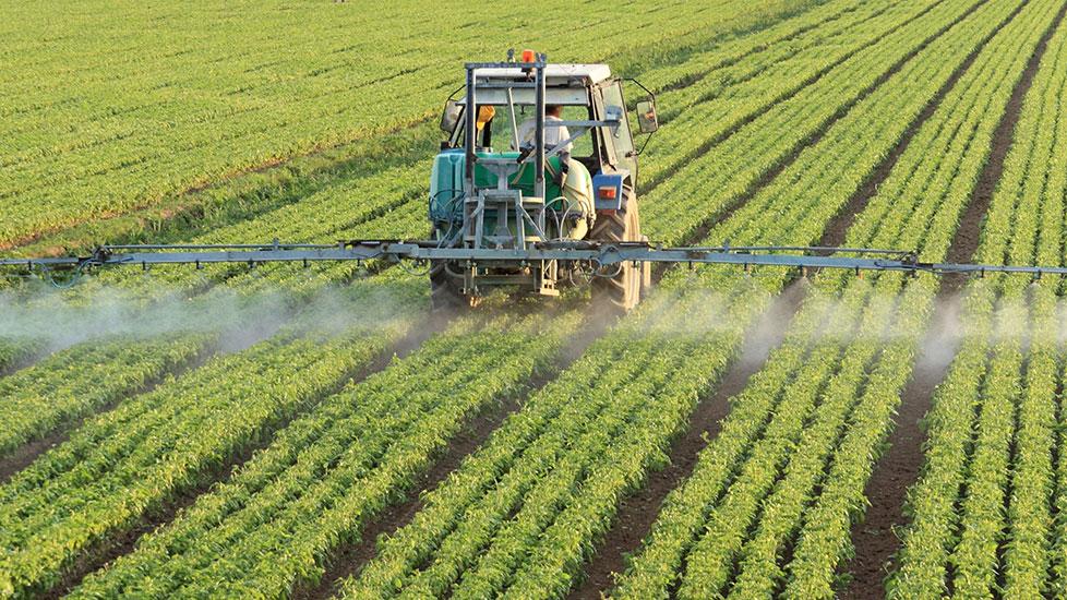 Classifications des pesticides