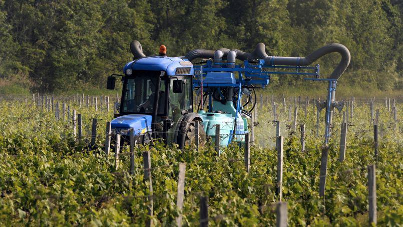 Après le traitement des vignes, il faut parfois attendre plusieurs jours pour y travailler de nouveau.
